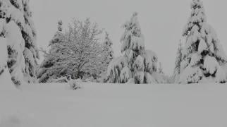 Neve febb2018 5